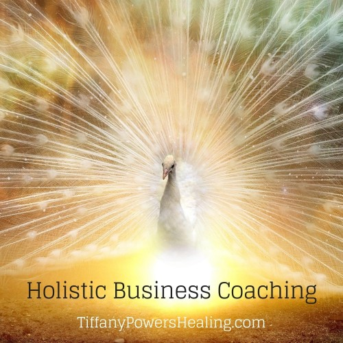 Holistic Business Coaching Tiffany Powers
